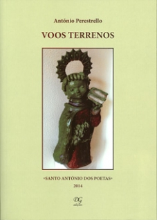 VOOS TERRENOS